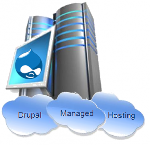 Drupal Managed Hosting