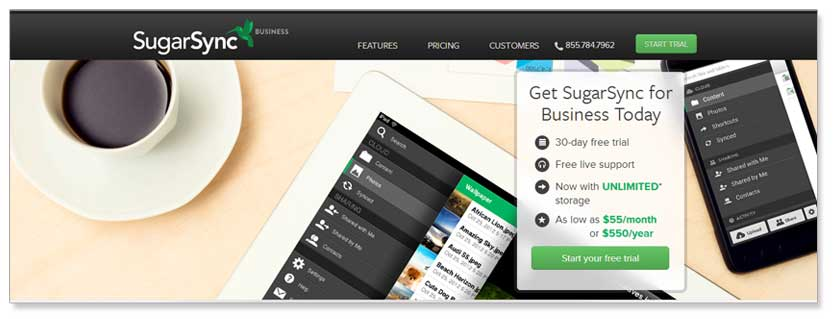 SugarSync for Business